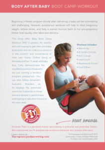 Body After Baby Boot Camp Workout DVD